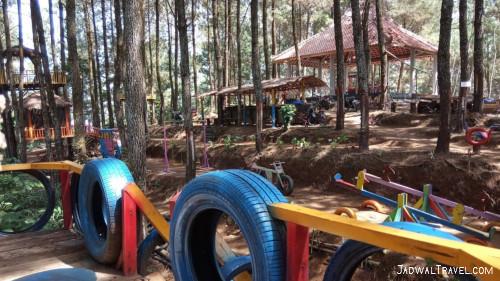 Hutan Pinus Gong Silegi