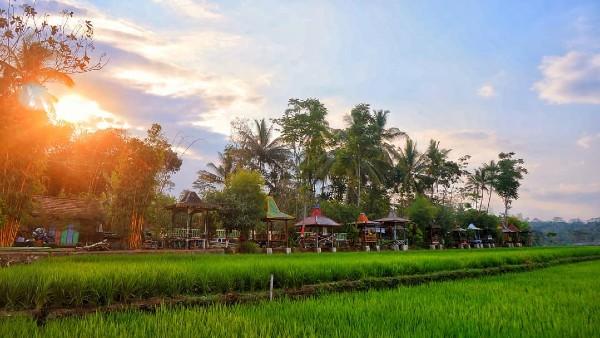 Desa Wisata Kemutul