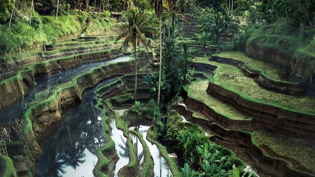 Destinasi Wisata Terbaik di Indonesia