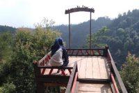 Pinus Sewu Wonogiri