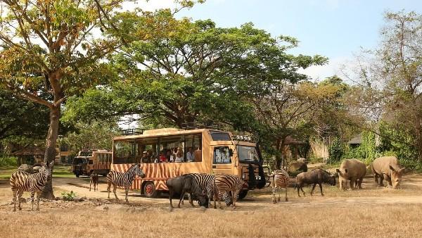 Taman Safari Terbaik