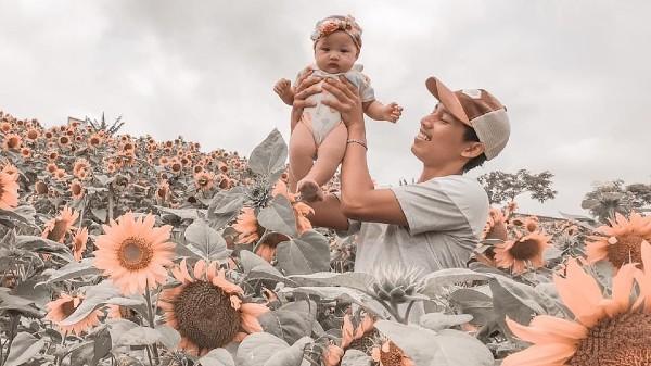 Ladang Bunga Matahari Batu