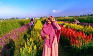 Rainbow Garden Gowa