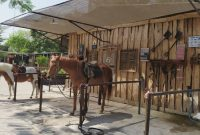 Jogja Horse and Resto