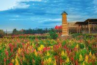 Taman Bunga Adn Firdaus