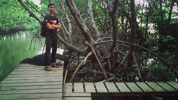 Tiket masuk hutan Mangrove Semarang