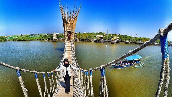 hutan Mangrove JembatanApiapi