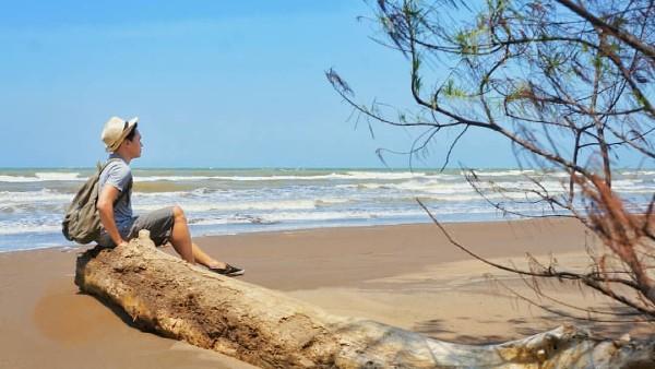 Tiket Masuk Pantai Wonokerto