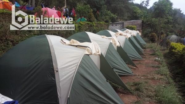 Mawar Camp Ungaran